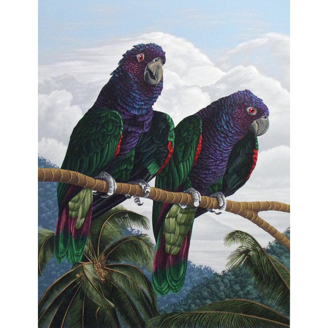 """Dallas John """"Imperial Mates"""" Birds Parrots Signed Numbered Serigraph Art Print Unframed For Sale"""