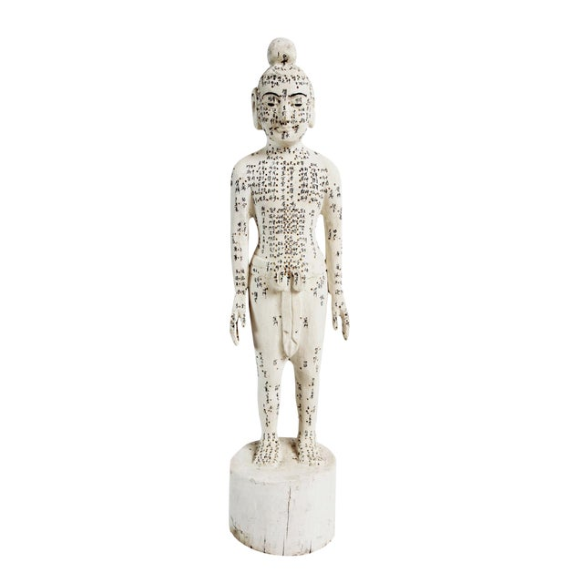 Chinese Acupuncture Statue Medium Male For Sale