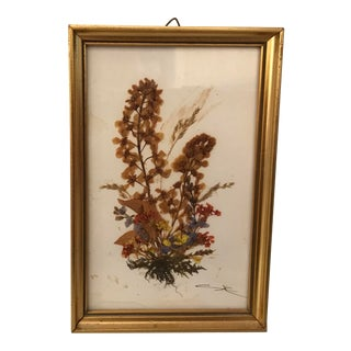 Vintage Austrian Dried Botanical in Gold Frame For Sale