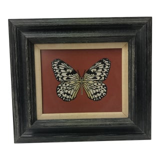 Vintage Framed Butterfly Tapestry on Rustic Black Frame