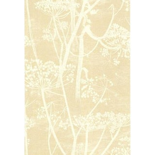 Cole & Son Cow Parsley Wallpaper Roll - White/Bge For Sale