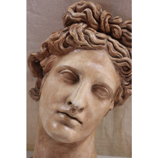 "Traditional Plaster ""Apollo Belvedere"" Wall Plaque For Sale - Image 3 of 10"