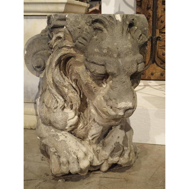 Magnificent Pair of Antique Stone French Lion Architecturals For Sale In Dallas - Image 6 of 10