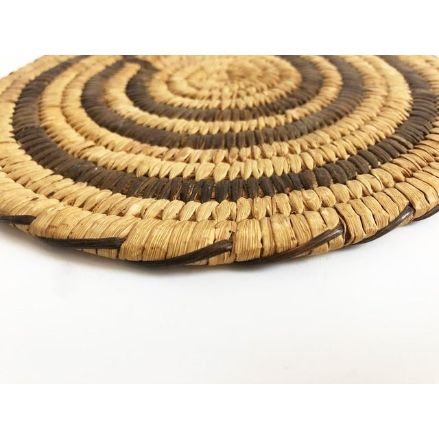 Native American Vintage Native American Tohono O'Odham Two Tone Wall Coil Basket Wall Hanging For Sale - Image 3 of 6
