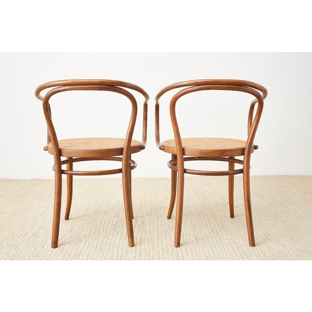 Thonet 209 Bentwood Cane Armchairs - Set of 8 For Sale - Image 12 of 13