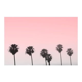Unframed Pink Palms Pink Sky Photo Print For Sale