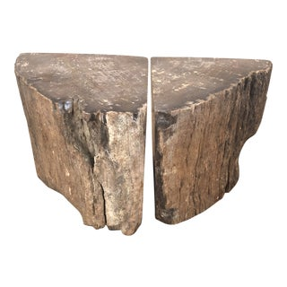 1900s Organic Modern Petrified Wood Bookends - a Pair For Sale