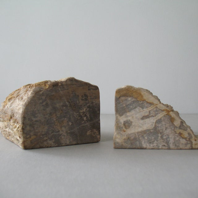 Petrified Wood Bookends - A Pair - Image 9 of 9