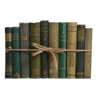Antique Boxwood ColorPak - Decorative Books in Shades of Green For Sale