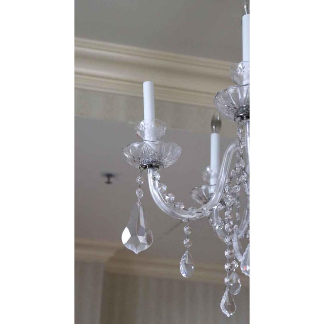Traditional Salvaged Waldorf Six Glass Arms Crystal Chandelier For Sale - Image 3 of 7