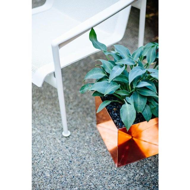 "Trey Jones Studio Origami Planter - Copper 20"" For Sale - Image 4 of 6"