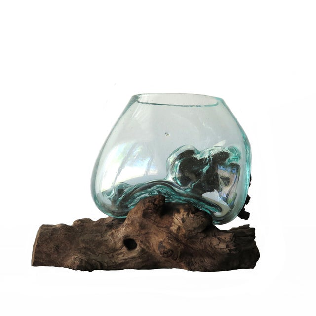 Glass And Teak Driftwood Terrarium For Sale
