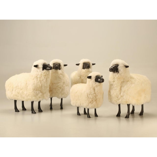 Baby Lamb Hand Made by Old Plank Collection For Sale - Image 11 of 11