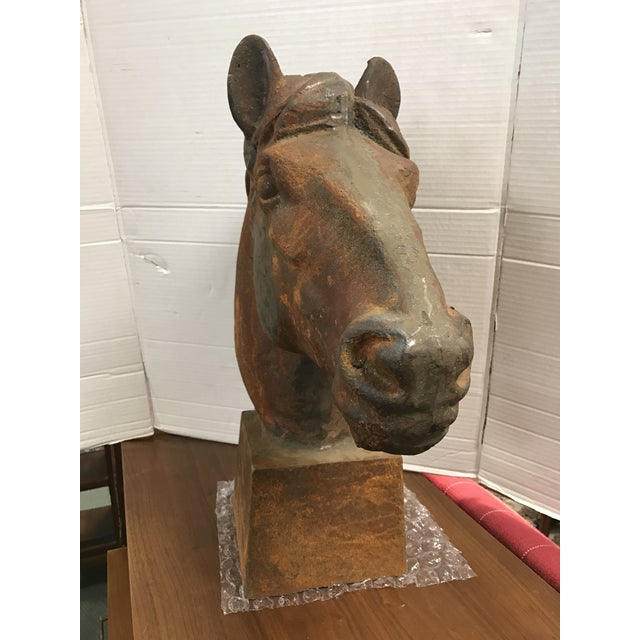 Life Size Cast Iron Horse Head For Sale - Image 5 of 5