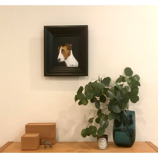 Parsons Jack Russell For Sale - Image 4 of 5