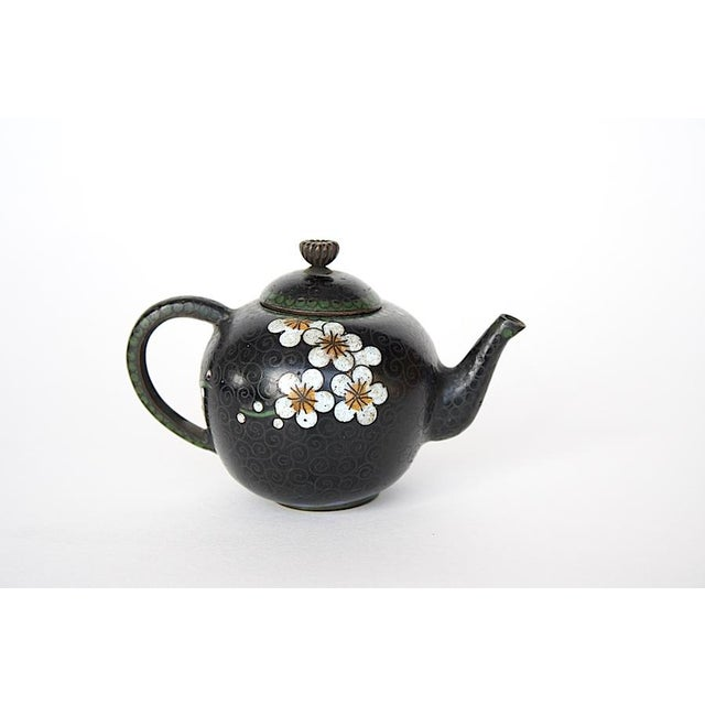 This antique miniature teapot is a tiny gem of cloisonné art. The white cherry blossoms pop against the black background...