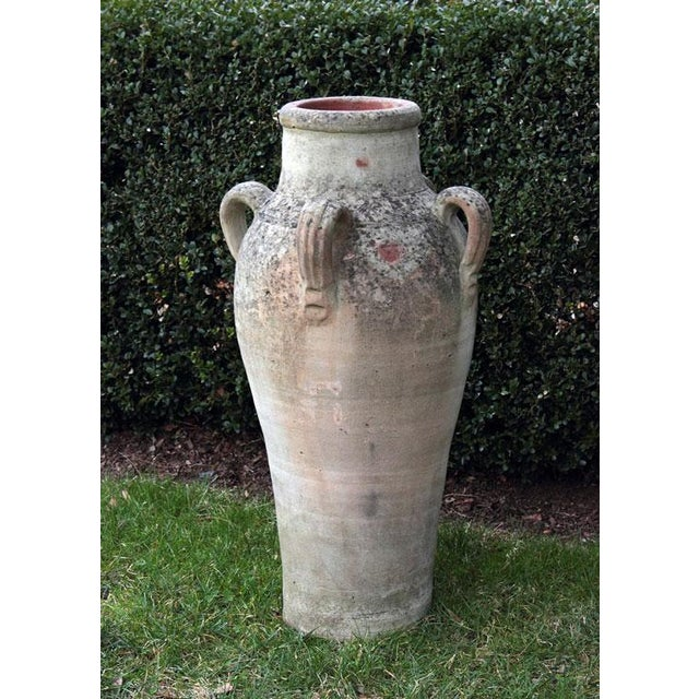 A four-handled terra-cotta olive jar, Italian, ca. 1950. 30 ins. high, 15 ins. overall diameter; 5.75 ins. diameter of...