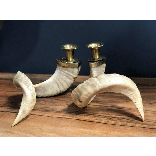 Large Horns Candlestick Holders with Brass For Sale In Los Angeles - Image 6 of 8