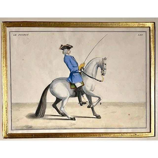 Four Engravings of Horse Riders L' Aimable, Le Joli, Le Sanspareil, Le Poupon For Sale In New York - Image 6 of 11