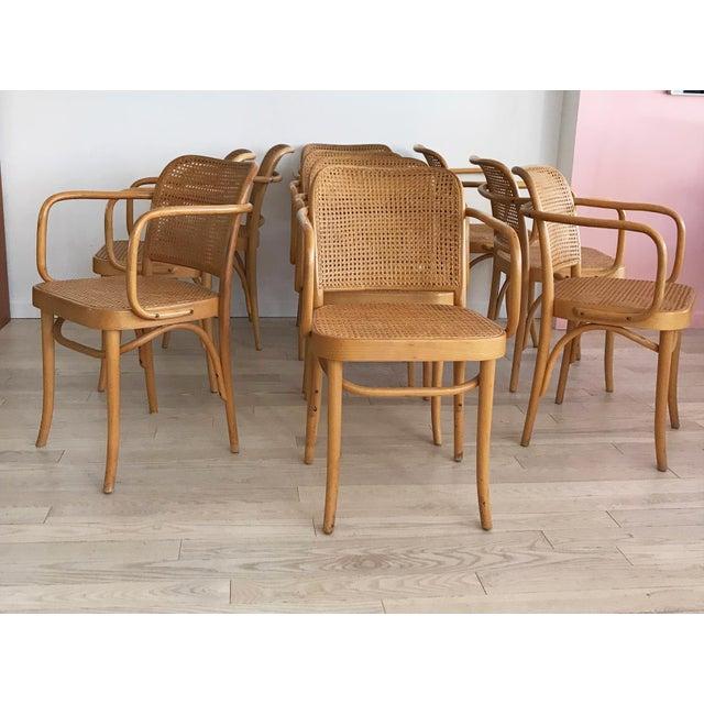 "Mid-Century Josef Hoffmann ""Prague"" 811 Cane & Bentwood Armchairs - Set of 10 - Image 2 of 11"