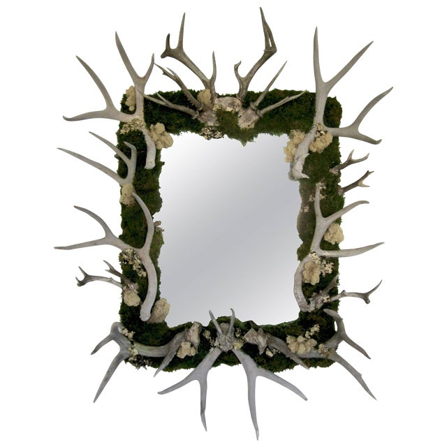 Antler and Preserved Moss Mirror For Sale