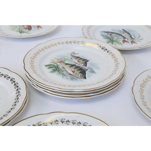 Transitional Set of Twelve Digoin and Sarreguemines Fish Plates For Sale - Image 3 of 9