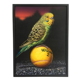 1990s Wilson's Parakeet Painting For Sale