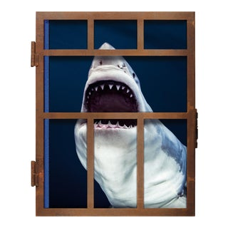 """TASCHEN Books, """"Michael Muller. Sharks"""" Photography Collection, Limited Edition, Signed For Sale"""