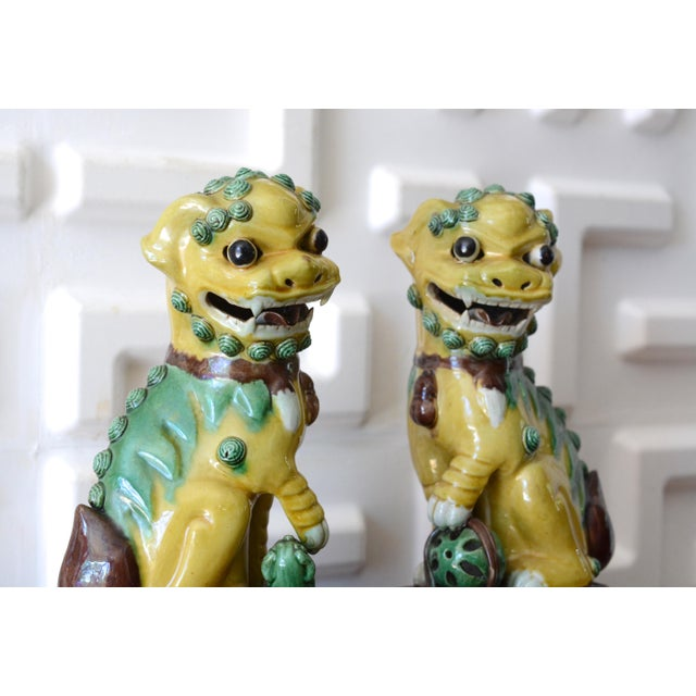 1940s Foo Dog Statues - a Pair For Sale - Image 6 of 11