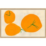 Image of Persimmon Art Print For Sale