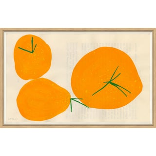 Persimmon Art Print For Sale