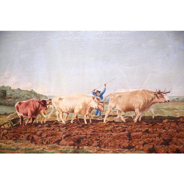 Early 20th Century French Oil Cows Painting in Carved Arched Gilt Frame For Sale - Image 4 of 10