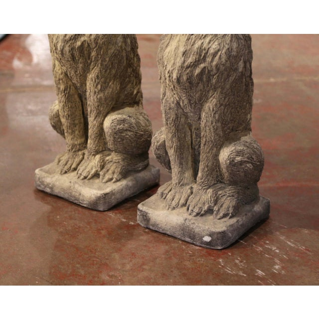 Vintage French Weathered Carved Stone Statuary Scottish Deer Hounds - a Pair For Sale - Image 4 of 11