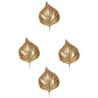 1 of 4 Huge Rhaburb Leaf Brass Wall Lights or Sconces by Tommaso Barbi For Sale