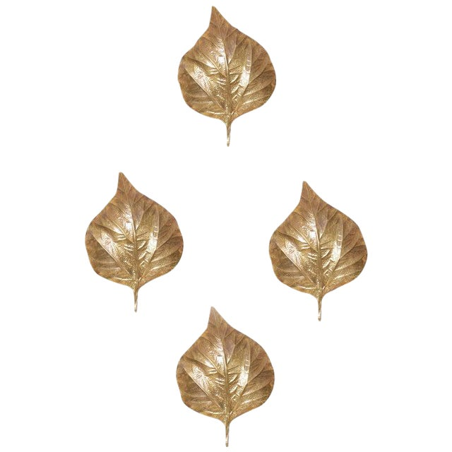 1 of 4 Huge Rhaburb Leaf Brass Wall Lights or Sconces by Tommaso Barbi For Sale
