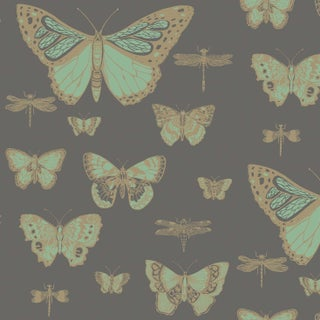 Cole & Son Butterflies & Dragons Classic Style Wallpaper Sample