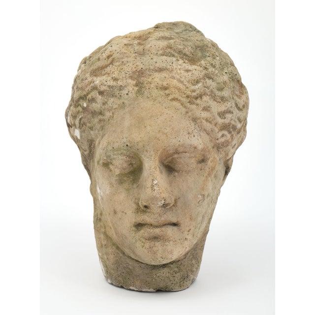 Antique Stone Bust of Greek Goddess Athena For Sale - Image 4 of 10