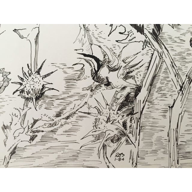 """""""Thistles"""", Pen & Ink by Roger Stokes - Image 4 of 4"""