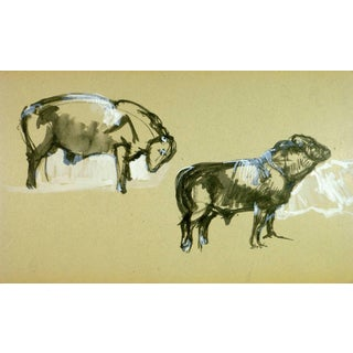 J. Marchand, Black & White Ink Wash of Cattle For Sale