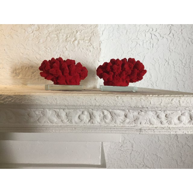 Faux Red Coral Bookends - A Pair - Image 4 of 5