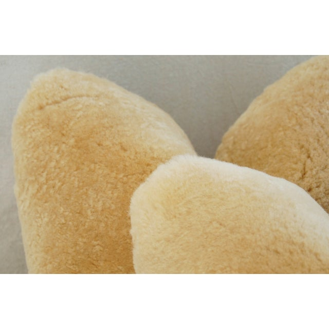 Pierre Frey Plush Lambswool Pillows - A Pair - Image 9 of 10