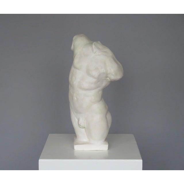 Mid 20th Century Plaster Sculpture of a Male Torso | Chairish