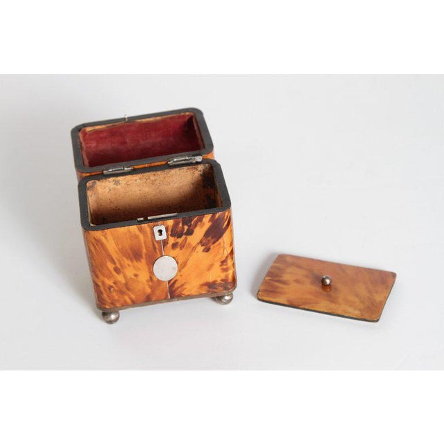 Early 19th Century Early 19th Century English Regency Tortoiseshell Tea Caddy For Sale - Image 5 of 11