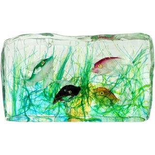 Cenedese Murano Green Pink Orange Black Fish Italian Art Glass Aquarium Block For Sale