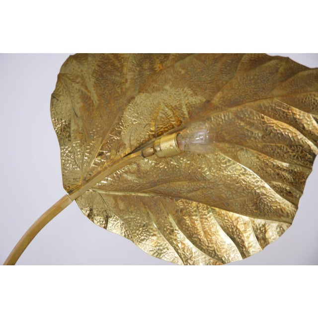 Tommaso Barbi Extraordinary Huge Rhubarb Leaves Brass Floor Lamp by Tommaso Barbi For Sale - Image 4 of 5