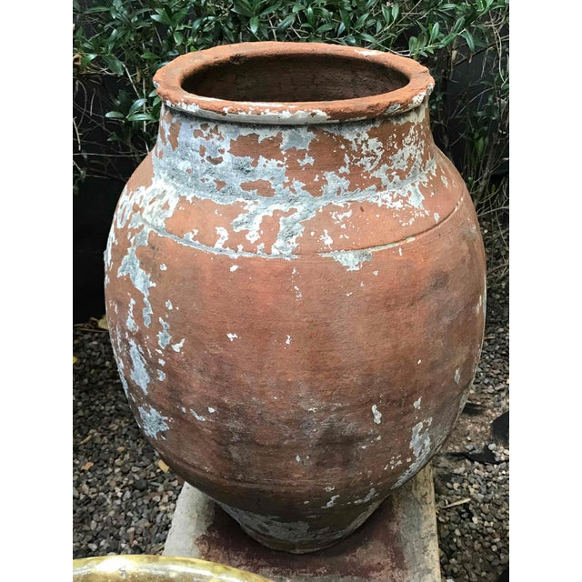 Large 19th century terra cotta pot with tapered base from France.