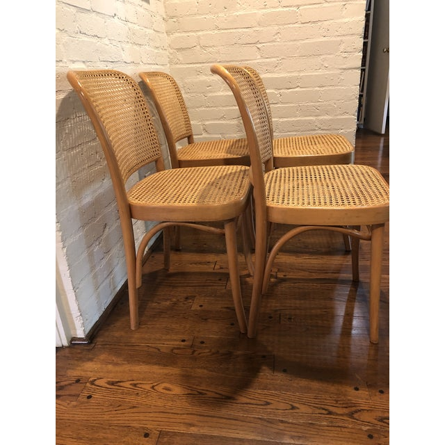 Mid-Century Modern Josef Hoffmann Thonet Prague Side Chairs- a Set of Four For Sale - Image 3 of 11