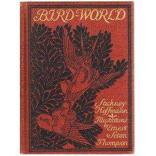 "1898 ""Bird World: A Bird Book for Children"" Collectible Book For Sale"