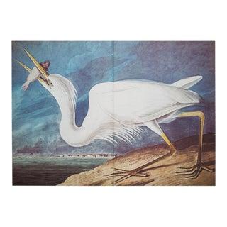 1966 Audubon Great White Heron Lithograph
