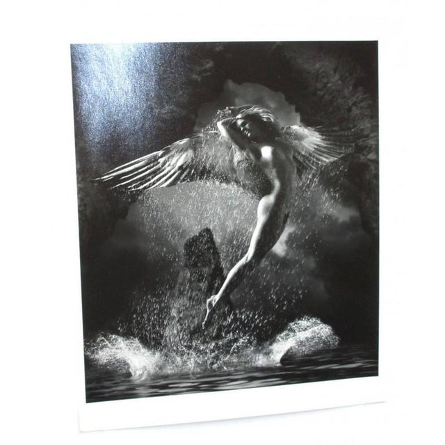 2001 James Porto 'The Guardian' Framed Silver Gelatin Photograph For Sale In Houston - Image 6 of 8